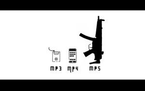 Evolution of MP.jpg